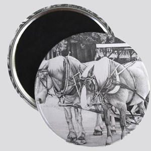 Horse Drawing Magnet