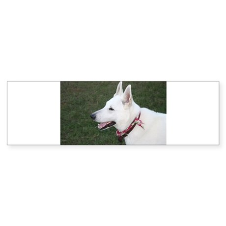 White German Shepherd Bumper Sticker