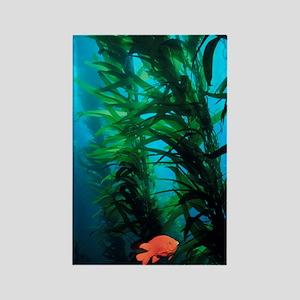 Kelp Scene Rectangle Magnet