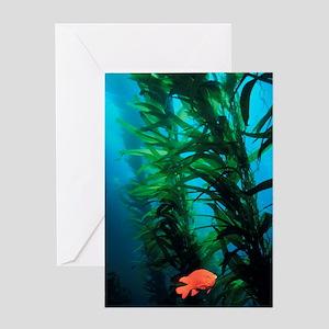 Kelp Scene Greeting Card