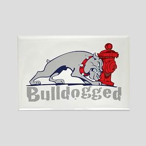 Bulldogged Rectangle Magnet