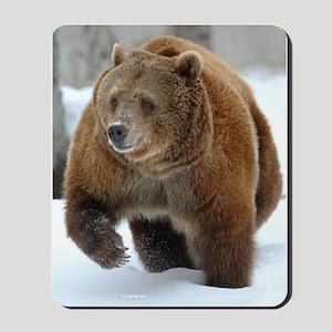 Snow Bear Mousepad