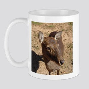 fallow 2 Mug