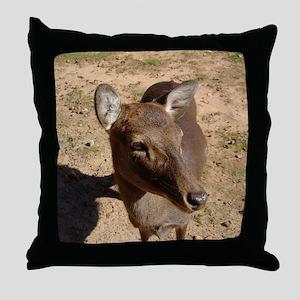 fallow 2 Throw Pillow
