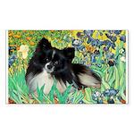 Irises / Pomeranian(bb) Sticker (Rectangle)