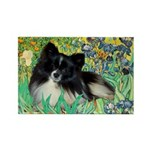 Irises / Pomeranian(bb) Rectangle Magnet (10 pack)