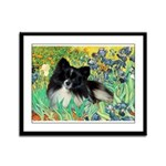 Irises / Pomeranian(bb) Framed Panel Print