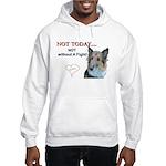 Quincy Hooded Sweatshirt