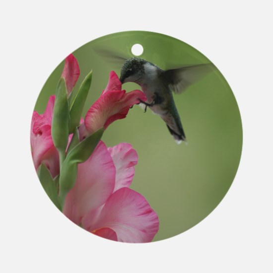 Hummingbird And Gladiolas (round) Round Ornament