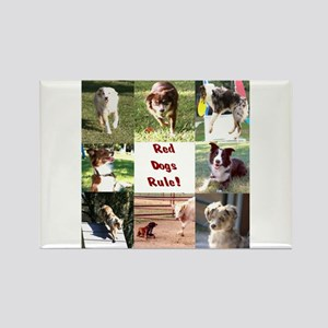 Red Dogs Rule Too! Rectangle Magnet