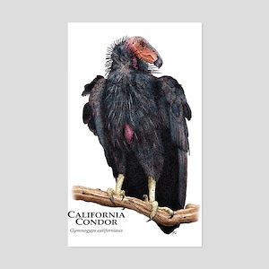 California Condor Rectangle Sticker