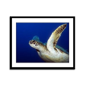 Flying Sea Turtle Framed Panel Print