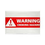 Warning! Choking Hazard Rectangle Magnet (10 pack)