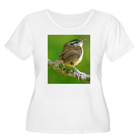 Carolina Wren Women's Plus Size Scoop Neck T-Shirt