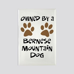 Owned By A Bernese Mt. Dog Rectangle Magnet