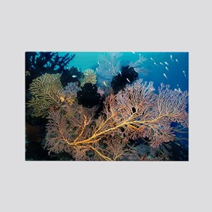 Sea Fan with Crinoids Rectangle Magnet