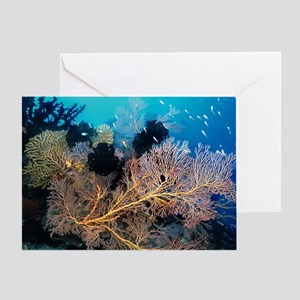 Sea Fan with Crinoids Greeting Card