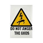 Do Not Anger The Gods Rectangle Magnet (10 pack)