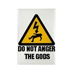 Do Not Anger The Gods Rectangle Magnet (100 pack)
