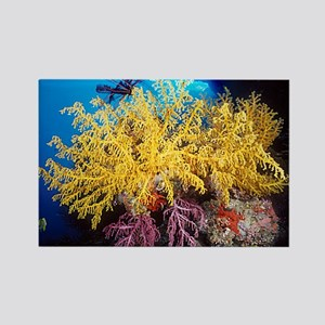 Yellow Soft Coral Rectangle Magnet