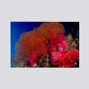 Thailand Sea Fan Rectangle Magnet