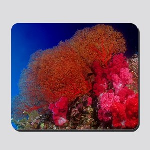 Thailand Sea Fan Mousepad