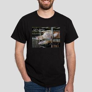Choose Kindness...this isn't it. T-Shirt