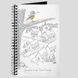 Springtime Journal