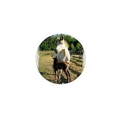 BEAUTIFUL HORSES Mini Button (100 pack)