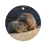Groundhog Family Ornament (Round)