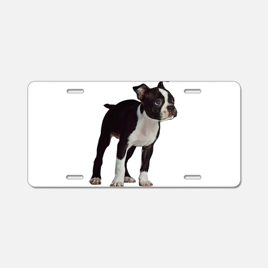Boston Terrier Puppy Aluminum License Plate