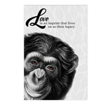 Painted Chimpanzee Love Postcards (Package of 8)
