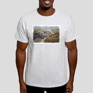 Irish Wolfhounds Ash Grey T-Shirt