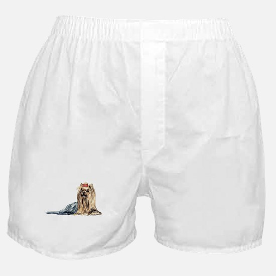 Yorkshire Terrier Dog Portrait Boxer Shorts