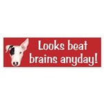 Looks Beat Brains Bumper Sticker
