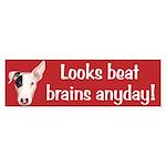 Looks Beat Brains Bumper Sticker
