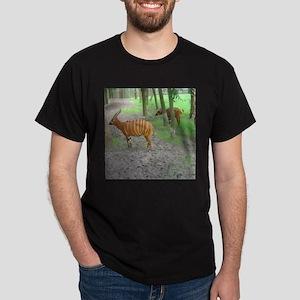 bongos Dark T-Shirt