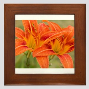 Orange Lilies Framed Tile