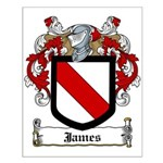 James Family Crest Small Poster