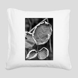 Leaf Square Canvas Pillow