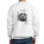 2007 ST Adoptions Sweatshirt