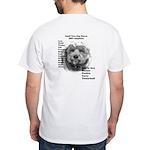 2007 ST Adoptions White T-Shirt