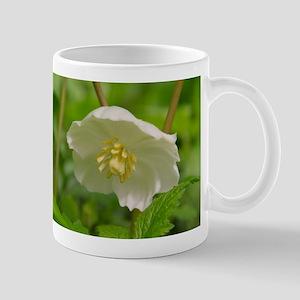 May Apple Bloom Mug