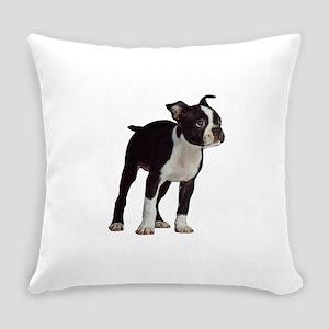Boston Terrier Puppy Everyday Pillow