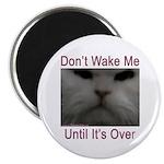 Don't Wake Me Magnet