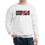 Got Torah w/American Flag Sweatshirt