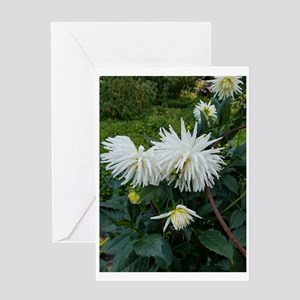 Flower 10 Greeting Cards