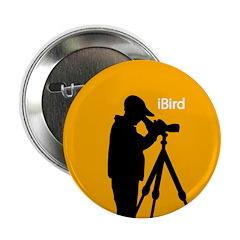 iBird (orange) 2.25