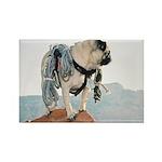 Vinny the Pug Rectangle Magnet (10 pack)