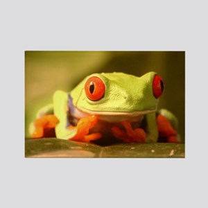Froggy Rectangle Magnet (10 pack)